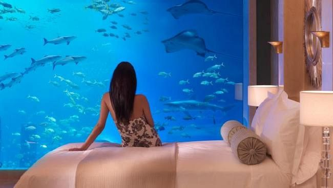 Gold Coast underwater hotel dream revealed