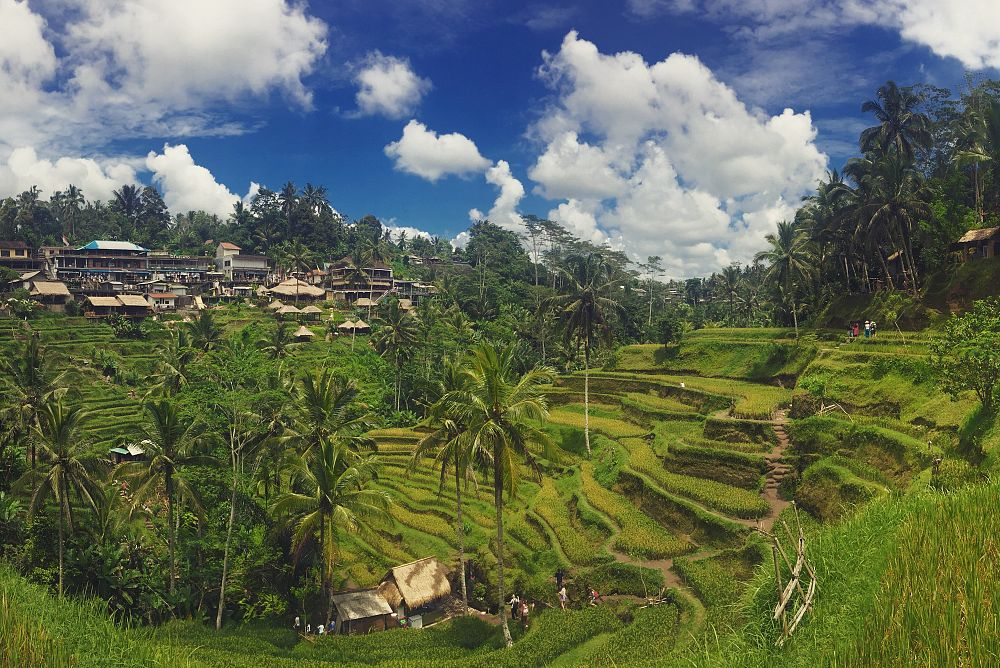 A Relaxing Holiday in Bali